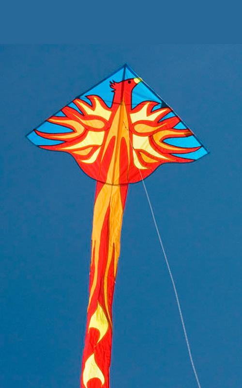 Воздушный змей птица